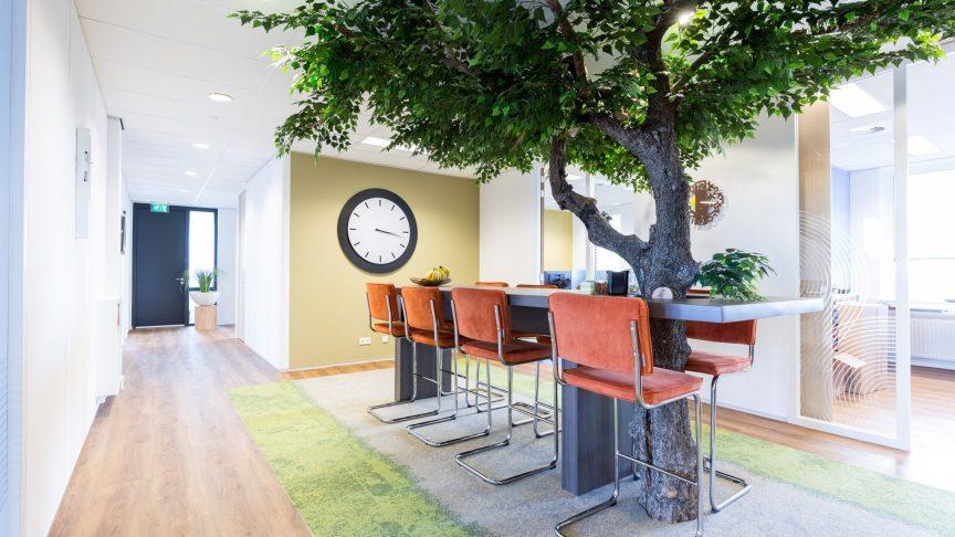 Drie voordelen van planten op kantoor