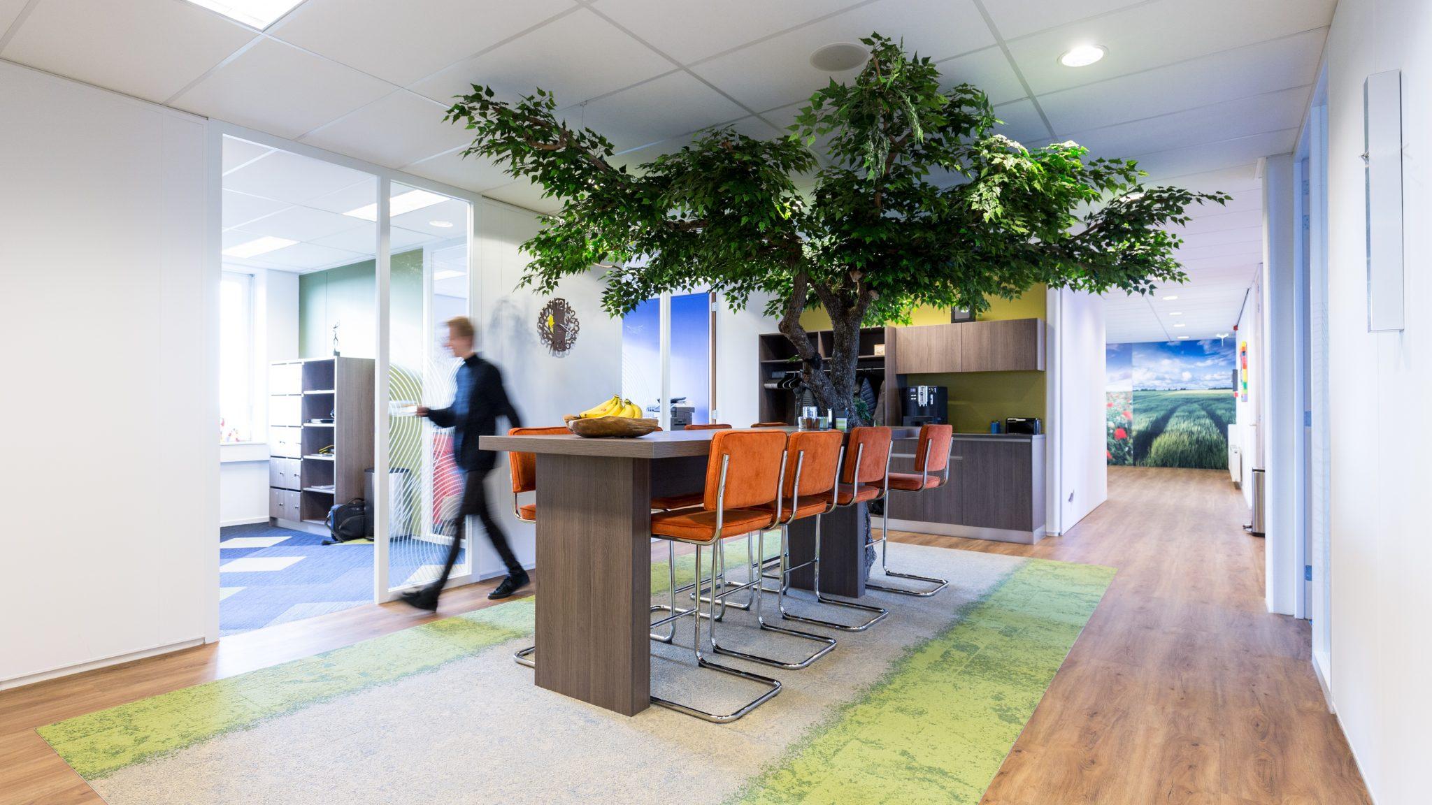 De Kolonel Assen - planten op kantoor - binnenboom