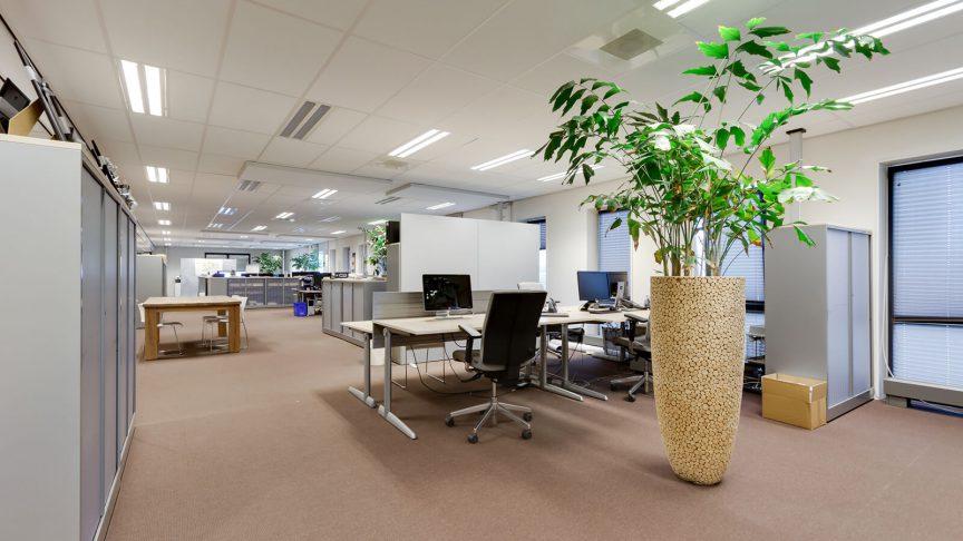 de kiefte3-17-eibergen kantoor (1)